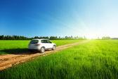 Printemps champ et estompée voiture sur la route de terre — Photo