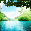 Stockfoto: Lake in deep forest