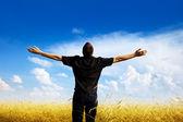 Buğday alan genç adam dinleniyor — Stok fotoğraf