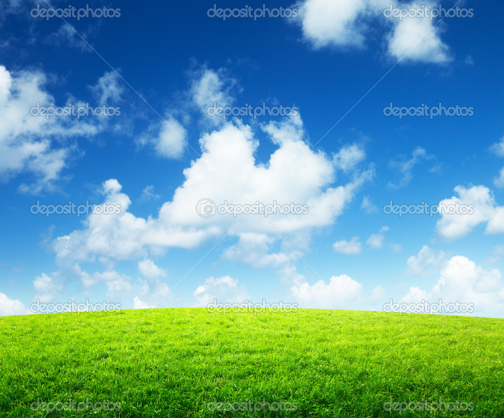 Green field and sunny day — Stock Photo #9229967