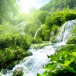 Waterfall in deep forest — Stock Photo
