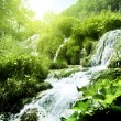Waterfall in deep forest — Foto de stock #9966982
