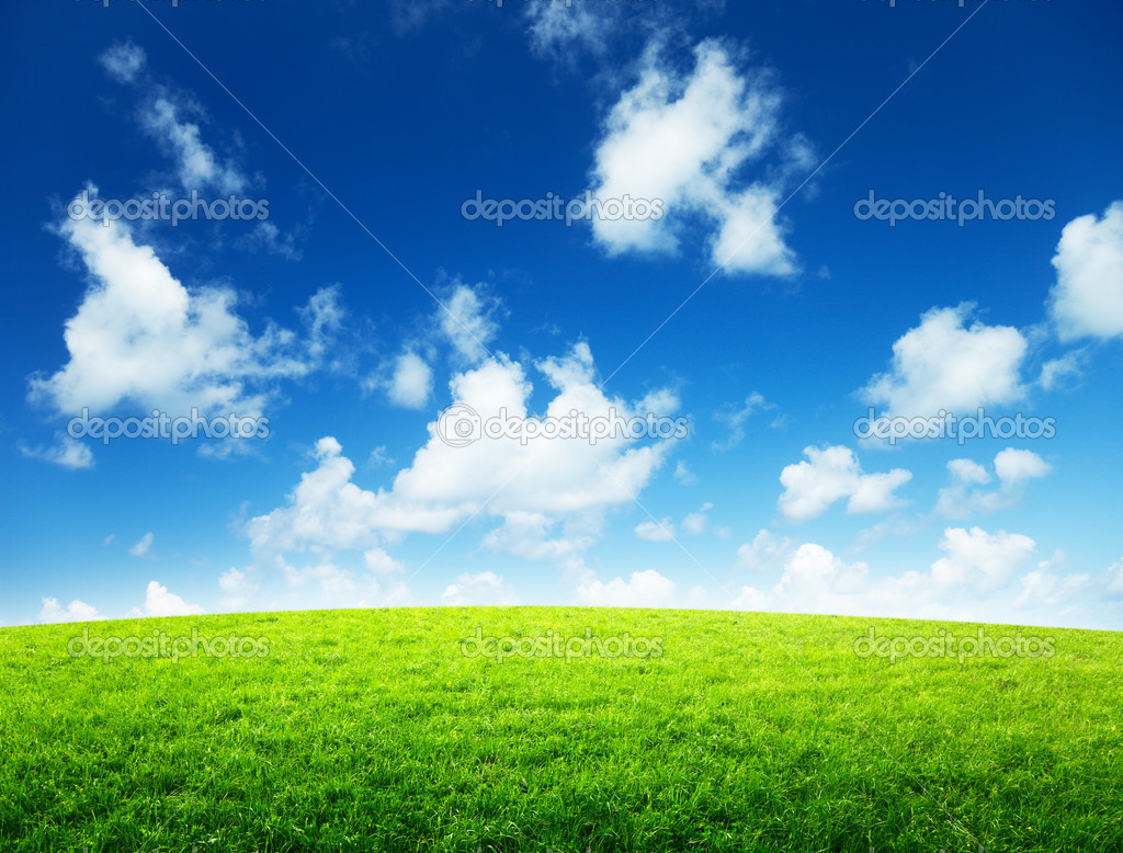Green field and sunny day — Stock Photo #9966997