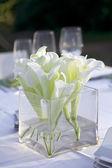Recepción de boda. — Foto de Stock