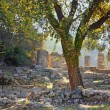 Stock Photo: Archaeological Site of Olympia, Greece.