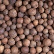 Allspice (jamaicpepper) — Stock Photo #10612416