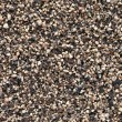 Crushed Black pepper (Piper nigrum) background. — Stock Photo #10613757