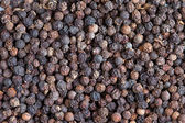 Black pepper (Piper nigrum) — Stock Photo