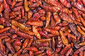 Hot chili peppers — Foto de Stock