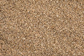 Ground Coriander (Coriandrum sativum) background. — Stock Photo