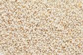 Sesame seeds (Sesamum indicum) background — Stock Photo