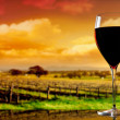Royalty-Free Stock Photo: Glass of wine on the background of the vineyard