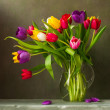 Colorful tulips — Stock Photo #10726674