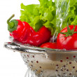 Tomatoes and peppers and lettuce - Stock Photo