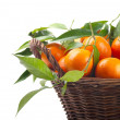 Tangerines in a basket - Stock Photo