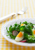 Salad with boiled egg — Stock Photo