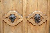 Two door knocker — Stock Photo