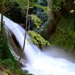 Stock Photo: Marmore waterfall in Italy