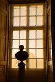 Busto com luz de fundo — Foto Stock