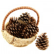 Stock Photo: Pine cones in basket.