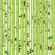 Bamboo seamless asian forest — Stock Vector