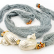 Foto de Stock  : Seashells on colourful female scarf