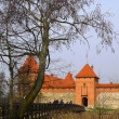 Trakai — Stock Photo