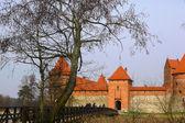 Trakai — Stok fotoğraf