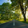 Summer day and road — Stockfoto