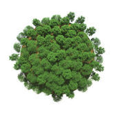 Green trees on a small planet — Stock Photo