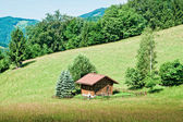 Small hut in the austrian alps — Stock Photo