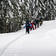 Group of snowshoe hikers - Stock Photo