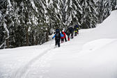 Group of snowshoe hikers — Stock Photo