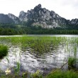 Rain on the Mountain Lake — Stock Photo