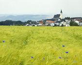 Village in upper austria — Stock Photo