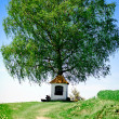 Stock Photo: Small Chapel with Tree