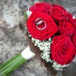 Red roses with wedding rings — Stock Photo