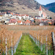 Village in danube valley — Stockfoto