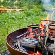Stock Photo: Campfire in wilderness