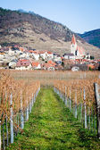 Village in danube valley — Stock Photo
