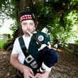 Stock Photo: Bagpiper in front of Tree