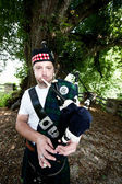 Bagpiper in front of a Tree — Stock Photo