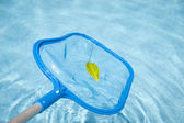 Skimmer piscina — Foto Stock