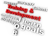 Treinamento e desenvolvimento — Foto Stock