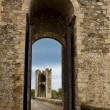 Details of bridge, Besalu, Catalonia. Spain — Stock Photo