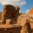 Teutonic Knights castle, Torun, Poland — Stock Photo