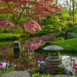 Japanese garden — Stock Photo #10566172