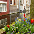 Stock Photo: Street of Delft, Holland