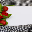 Red tulips with blank card — Stock Photo