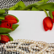 Stock Photo: Red tulips with blank card